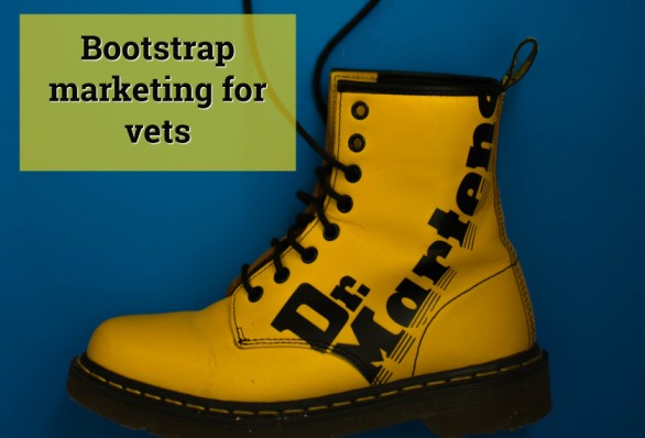 Bootstrap marketing for vets